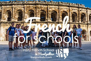 InSitu French Schools for Schools